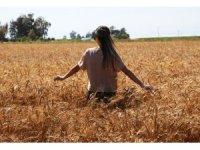 Doğu Anadolu'da sıcaklık mevsim normallerinin üzerinde seyretmeye devam edecek