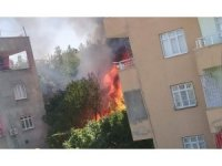 Siirt'te odunlukta çıkan yangın korkuttu: 3 çocuk dumandan etkilendi