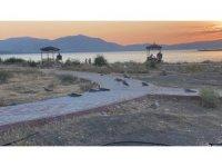 Elazığ'ın incisinde korkutan martı ölümleri