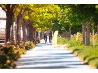 Konya Büyükşehir'in bisiklet uygulamaları dünyaya anlatılıyor
