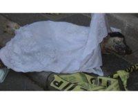 Kağıthane'de mobilya atölyesinde yangın: Mahsur kalan köpek telef oldu