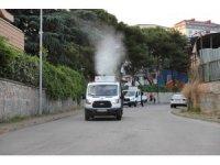 Kartal'da her gün 7 mahalle, sivrisinek ve haşerelere karşı ilaçlanıyor