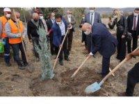 Başkan Altınok Melis Şimşek Hatıra Ormanı'na fidan dikti