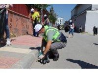 Akdeniz'de 'Dünya Temizlik Günü' etkinliği gerçekleştirildi