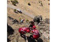 Tunceli'de kayalıklarda 3 gündür mahsur kalan hayvanlar kurtarıldı