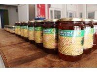 Ziraat Fakültesinden en tatlı üretim: 3 ayda 2,5 ton bal