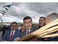 Burdur'da yılın ilk kenevir hasatı yapıldı