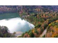 Borçka Karagöl'den sonbahar manzaraları