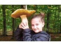 Mantar avcısı minik kız 2 kiloluk dev mantar buldu