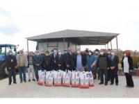 Üreticilere yem bezelyesi tohumu dağıtıldı