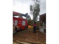 Yozgat'ta ağaç budarken elektrik akımına kapıldı, kurtarılamadı