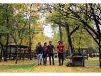 Sivas'ta kartpostallık Sonbahar görüntüleri oluştu