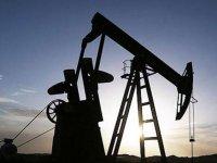 Brent petrolün varili uluslararası piyasalarda 84,53 dolardan işlem görüyor.