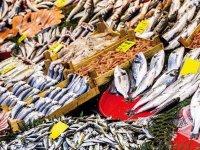 'Müsilaj engel değil, güvenle balık tüketin'