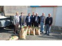 Çiftçilere yüzde 60 hibe destekli buğday tohumu