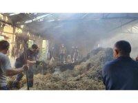 Tavuk çiftliğinde çıkan yangın 200 balya samanı kül etti