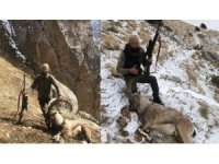 Kaçak avcıyı sosyal medya ele verdi