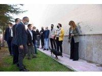 Hitit Üniversite'sinde 'Köpek Evi' projesi hayata geçirildi