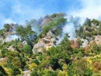 Ekipler, Osmaniye'deki yangın bölgesine karadan hortum döşüyor