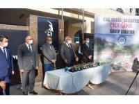 Belediye halka Osmanlı Çileği fidesi dağıtacak