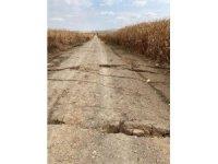 Karaman'da tarla yolunda oluşan yarıklar korkuttu