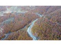 Yozgat ormanlarında renk cümbüşü havadan görüntülendi