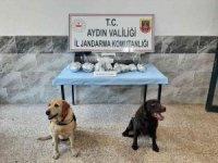Aydın'da 3 buçuk kilogram uyuşturucu ele geçirildi