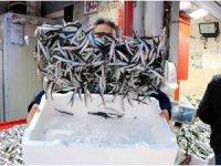 Karadeniz'in en ucuz balığı 7 TL, en pahalısı 150 TL