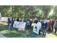 Burhaniye'de çamlığın imara açılmasına çevrecilerden tepki
