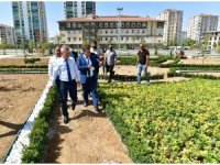 Yeşilyurt Belediyesi, kent estetiğine değer katıyor