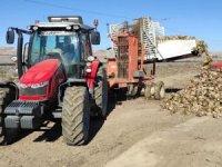 Ulaş'ta şeker pancarı rekoltesinin 1 milyon tonu geçmesi bekleniyor