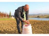 300 çiftçiye 30 ton tohum desteği