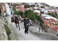 Belediye atla malzeme taşıyıp yol yapıyor