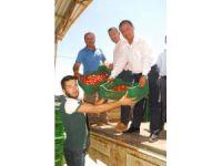 25 bin ton örtü altı domates Rusya'ya ihraç için yola çıktı