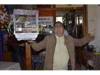 Bandırma'da kuş mezadı