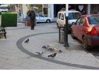 İzmit Belediyesi vatandaşları uyardı
