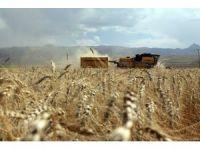 Milli Tarım Projesi Kapsamında Çorum'da Desteklenecek Ürünler Belirlendi