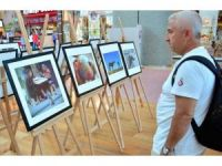 Hayvan Hakları Sergisi Şanlıurfa Piazza'da