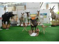 Tanzanya'nın vahşi doğası Expo 2016'da