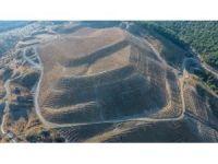 İzmir'de 600 dekarlık maden sahasında rehabilitasyon çalışmaları tamamlandı