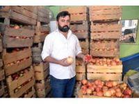 Siirt'in meşhur Zivzik narı altın yılını yaşıyor