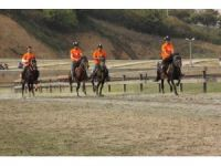 Rahvan Atlar Türkiye Şampiyonası Kocaeli'de yapıldı