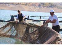 Denizi olmayan şehirden kıtalar arası balık ihracatı
