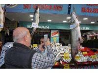 """Keban Barajı'ndan çıkan """"Dev"""" balıklar, balıkçıların yüzünü güldürüyor"""