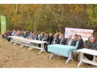 """Terme'de """"Soya Yetiştiriciliği Hasat Tarla Günü"""" düzenlendi"""