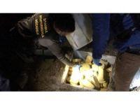 Narkotik köpeği 'Panzer' 82 kilogram uyuşturucu buldu