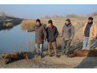 Kanalizasyon karışan su kanalı tehlike saçıyor
