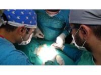 Av köpeğine boyun fıtığı ameliyatı