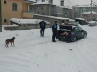 Ilgaz Belediyesi Sokak hayvanlarını için yem bıraktı