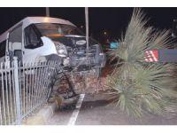 Alkollü sürücü aracıyla birlikte ağaca çıktı: 1 yaralı
